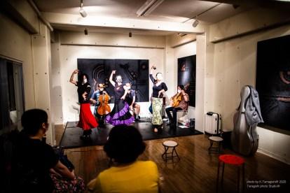 Flamenco Live 中本誠司現代美術館
