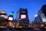 渋谷の大型ビジョンをランキング!