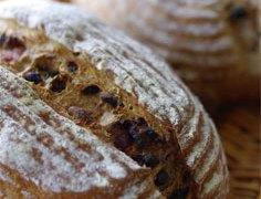 松本市│パン販売・パン教室の村山さんのご紹介