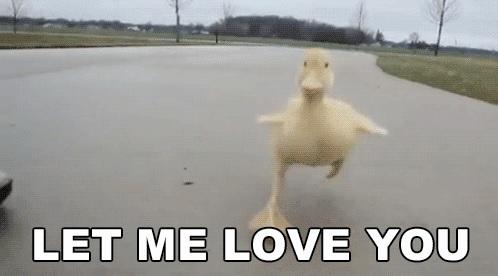 Valentijn: zo geef je de wereld wat liefde vandaag