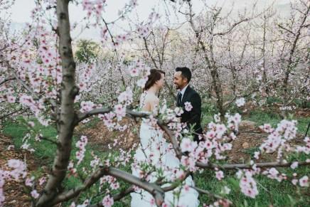 mike-nadie-wedding-kovacevicbosch-simondium-country-lodge-9278