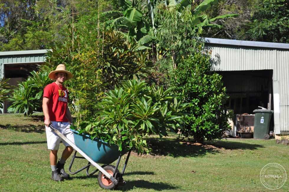 jardinage à Larnook - helpx wwoofing australie - kowala.fr