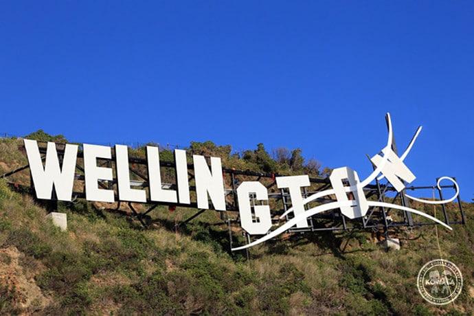 Wellington welly windy