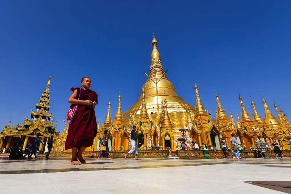 Moine de devant pagode Shwedagon, Rangoon, Myanmar