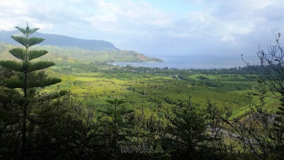 vue panoramique sur la baie hanalei de maui