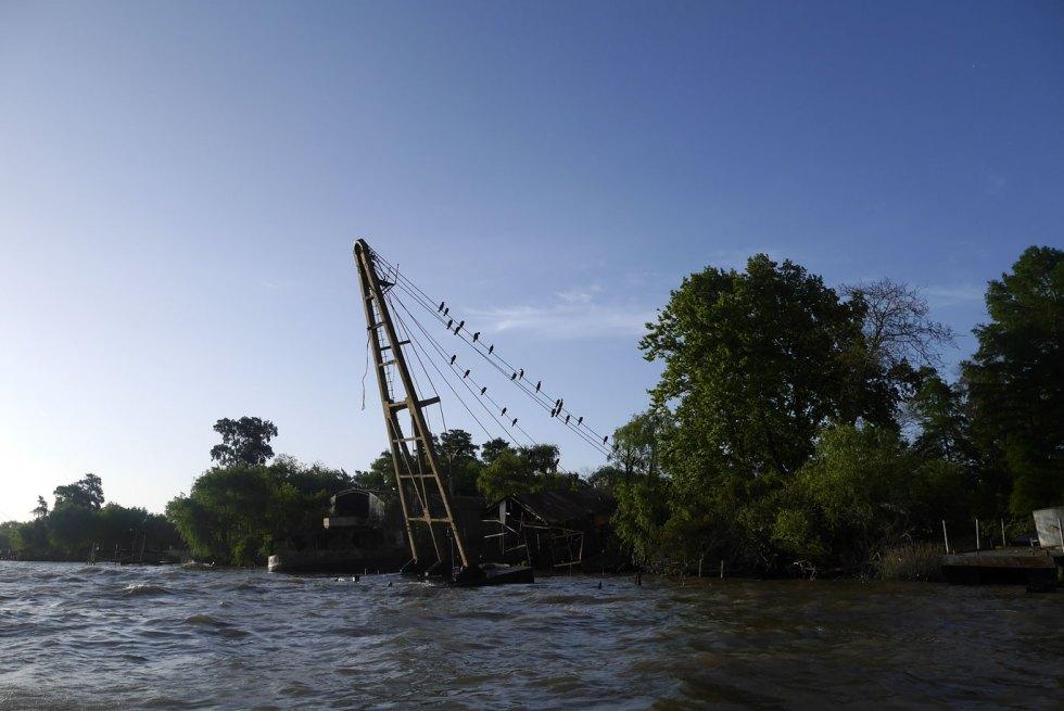 En bateau, des oiseaux sur un mat dans le delta du Tigre, en Argentine