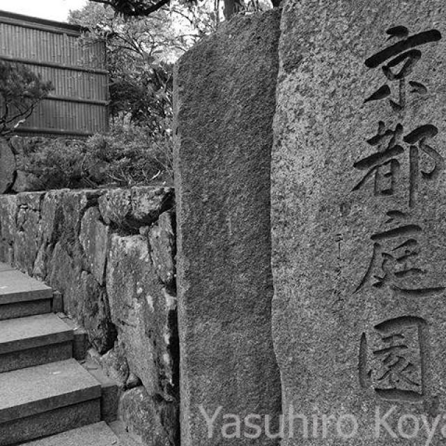 京都に来た。