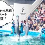 仙台うみの杜水族館!混雑具合と年間パスポートへの道。