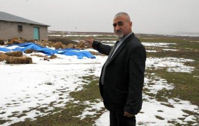 Ukrayna'dan Koyun Getirmek İsterken Dolandırıldı
