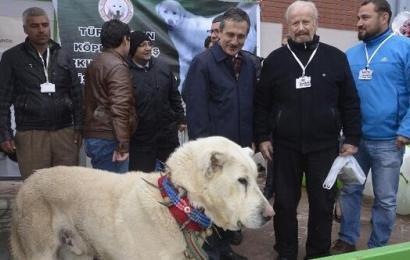 'Eskişehir Tarım, Hayvancılık ve Teknolojileri Fuarı' başladı