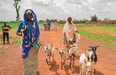 İyilik Derneği'nden Afrika'ya destek