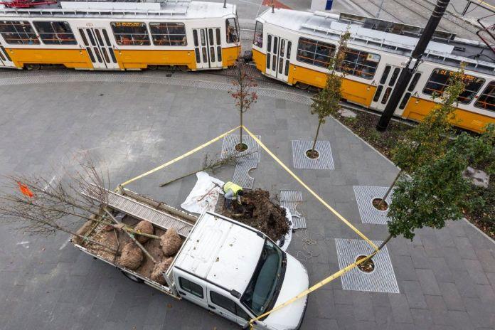 Budapest, 2016. november 8. Egy munkás a Széll Kálmán téren, ahol megkezdték a kiszáradt fák cseréjét november 8-án. MTI Fotó: Szigetváry Zsolt