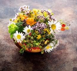 Najbolje biljke za umirenje kože
