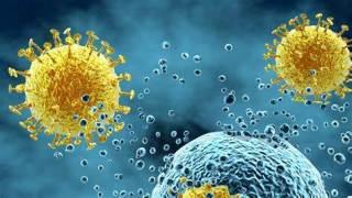 Virusi koji se prenose parenteralno