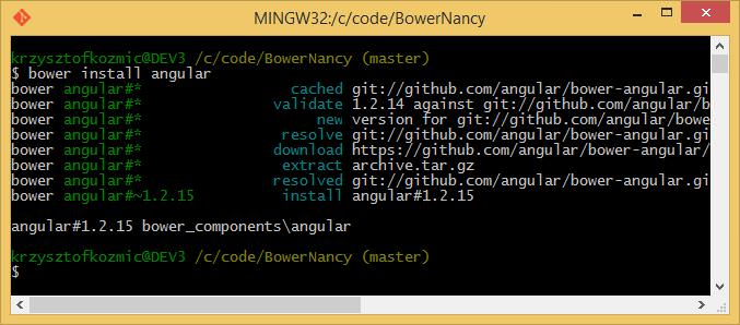 bower install angular
