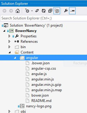 angular include in Solution