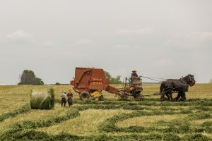 agriculture-731502_1920