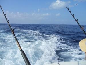 fishing poles deep sea