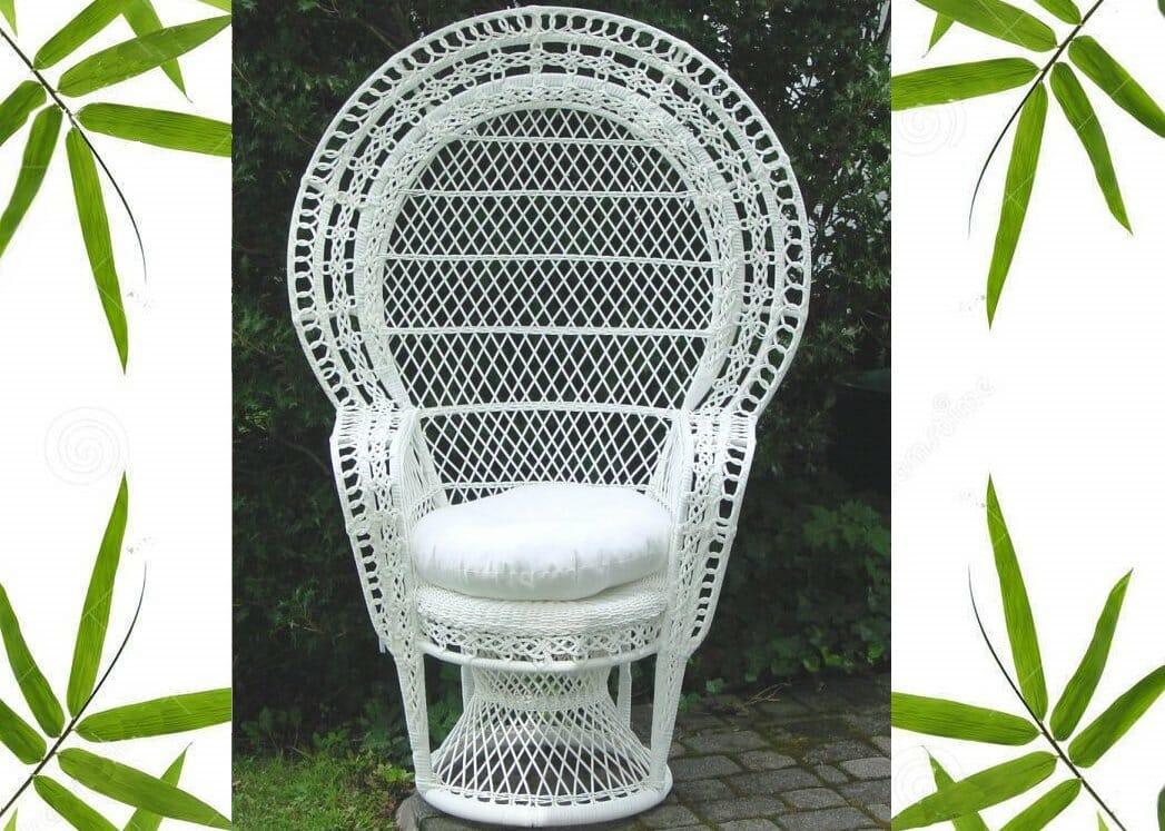 Outdoor Peacock Chair Kozy Kingdom
