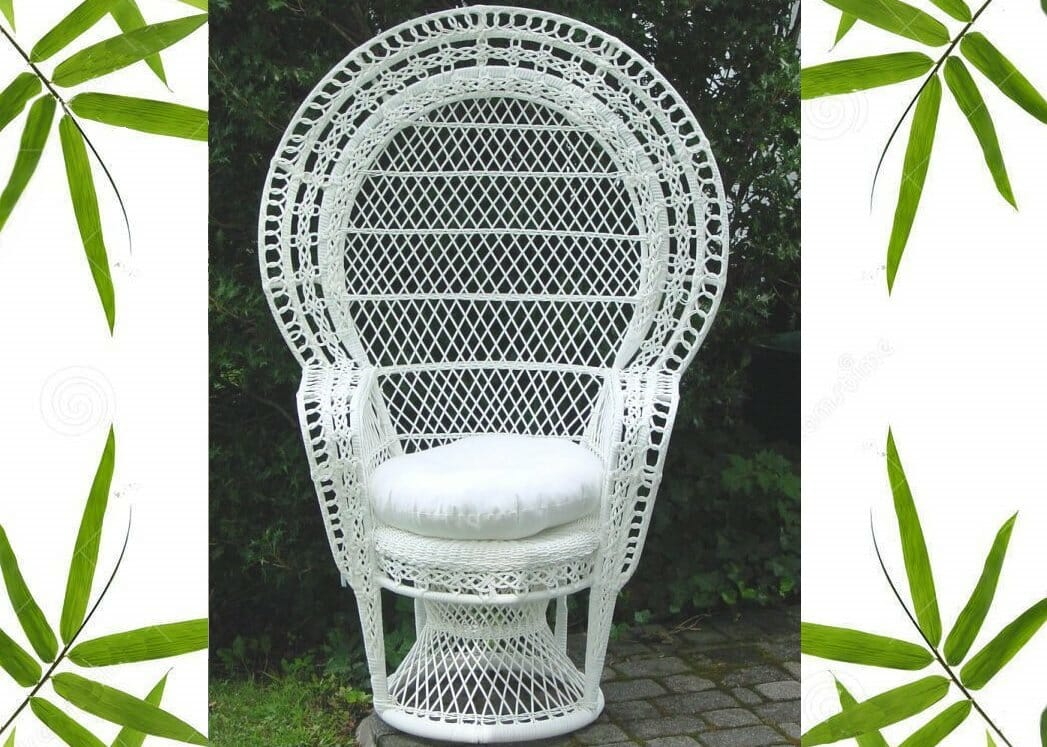wicker living room sets accessorize grey outdoor peacock chair | kozy kingdom