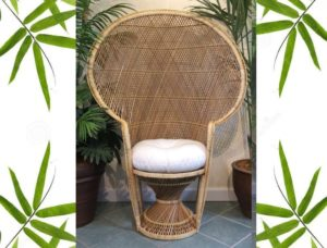 baby bamboo chair counter height bar chairs peacock for weddings bridle and showers sale 15106 9950