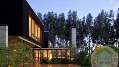 Photo of Misztikus chilei otthon
