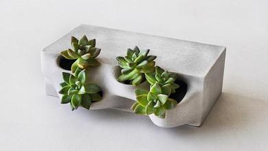Photo of Életre kelt beton: 3D nyomtatott virágcseréptéglák