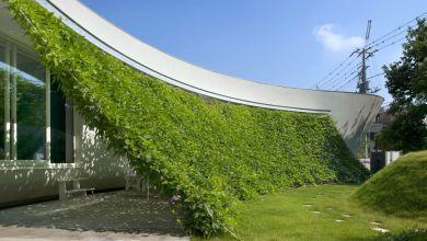 Photo of Modern japán házba integrált zöld fal