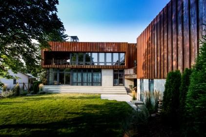 House-Wren-