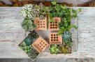 interesting-planter-design