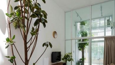 Photo of 5 szintes vietnami otthon