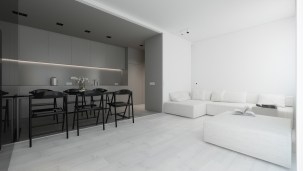 kitchen-and-lounge-area-grey-and-white-minimalism