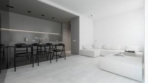 kitchen-and-lounge-area-grey-and-white-minimalism