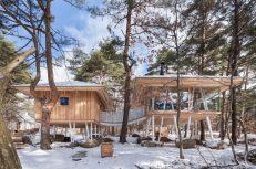modern-house-1
