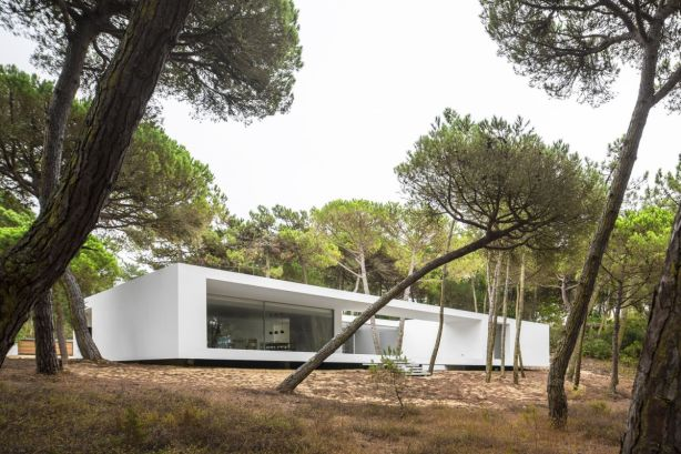 White-Residence-in-Colares