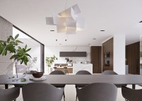 Sculptural-dining-pendnant-light