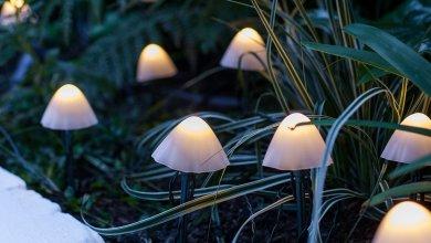 Photo of Mókás mini gomba alakú napkollektoros kültéri lámpa
