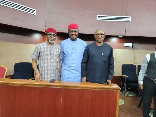 Breaking: Valentine Ozigbo Wins as Supreme Court Declares Him Authentic PDP Candidate
