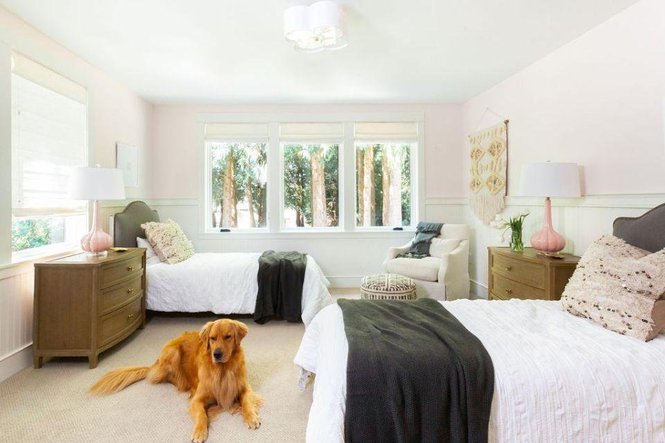 golden retriever in tween girls' bedroom