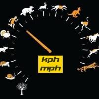 Topspeed: Tops Speed Hewan / Binatang Darat dan Perbandingannya dengan Manusia