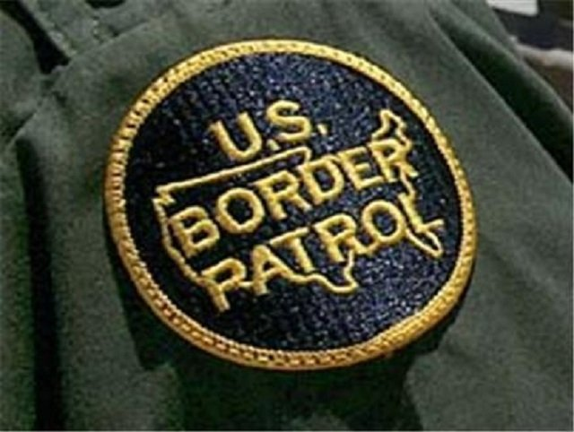 Image result for customs and border patrol