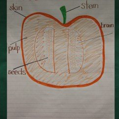 Parts Of A Pumpkin Diagram 1996 Honda Civic Car Stereo Wiring Kristen 39s Kindergarten