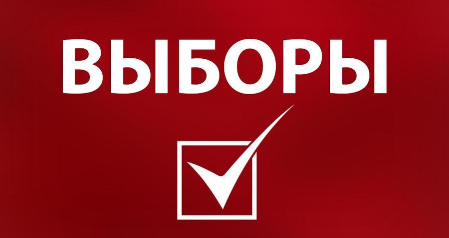 Красный ПолитОбзор: Как правильно наблюдать на выборах Президента! Ч.2