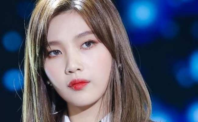 Joy Red Velvet Facts And Profile Joy S Ideal Type