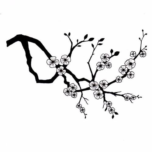 cherry-blossom-branch-web-1
