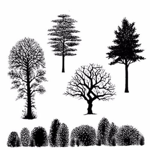 tree_scene