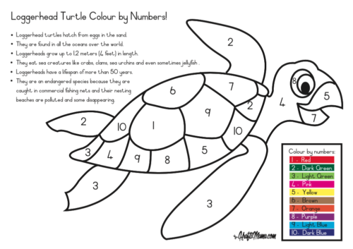 Kraftimama Free Printable, Colour by Number, Loggerhead Turtle