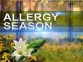 allergy-season