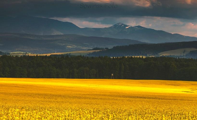 Łąka i góry zdjęcie