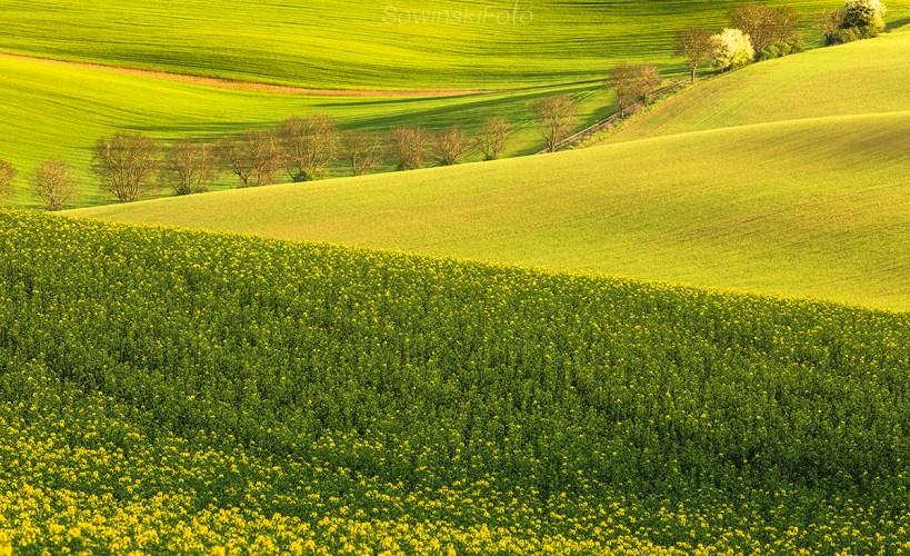 Wiosna zdjęcie krajobrazu